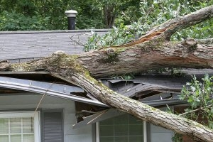 Homeowners: Prepare Your Home to Withstand Severe Spring Weather
